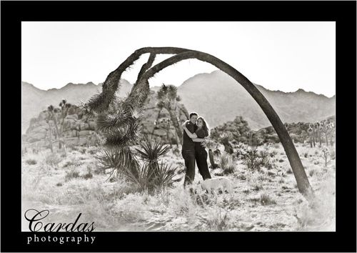 Mande at Joshua Tree