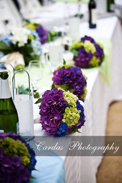 Monterey California  Wedding (47)