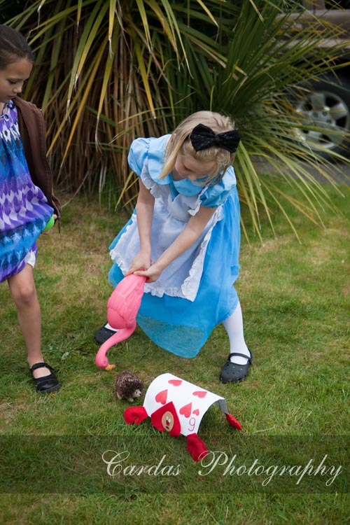 Alice in Wonderland birthday party 021