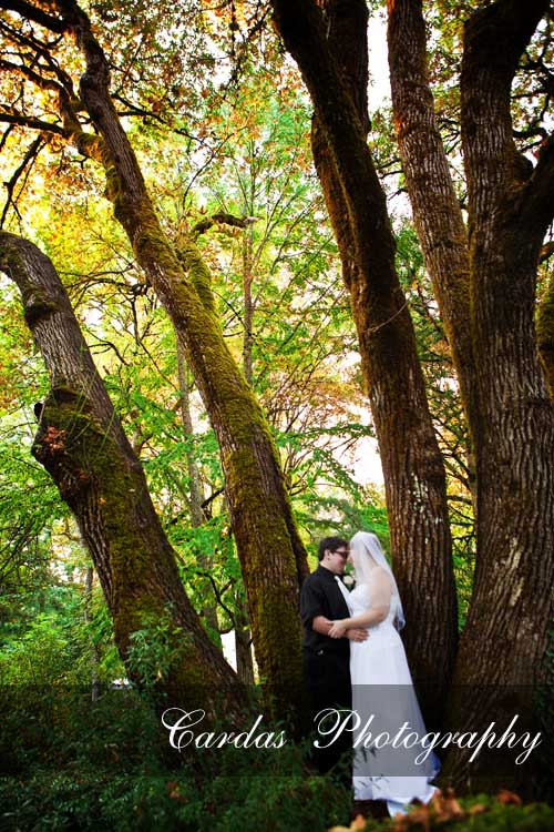 Salem Oregon Wedding Deepwood Estate (18)