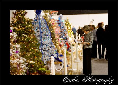 Festival_of_trees_165_2